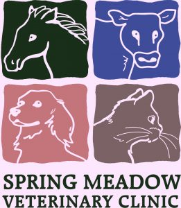 Spring Meadow Veterinary Clinic